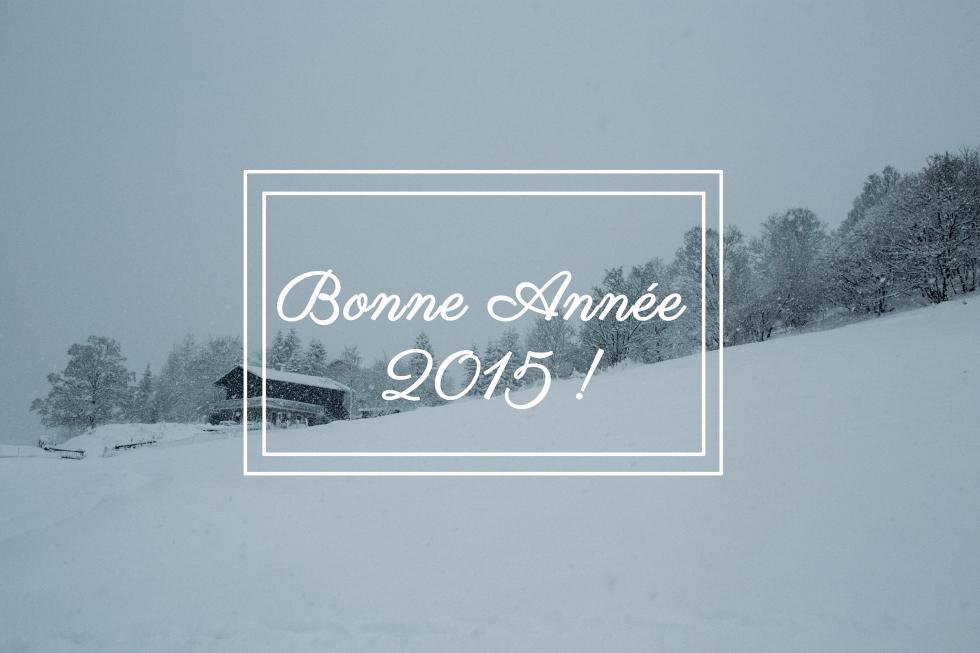 bonne année 2015d